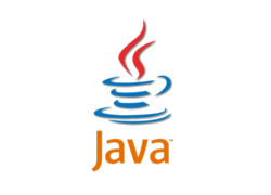 Java Partner Logo